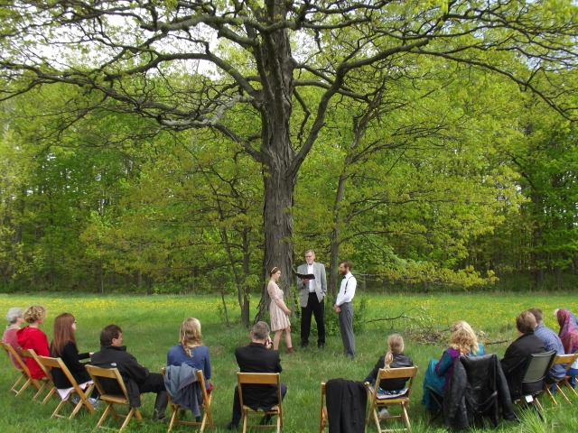 wedding ceremony under hickory tree